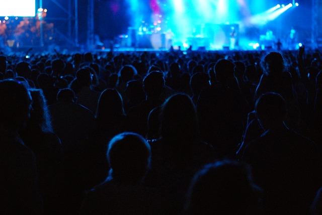publikum na koncertě