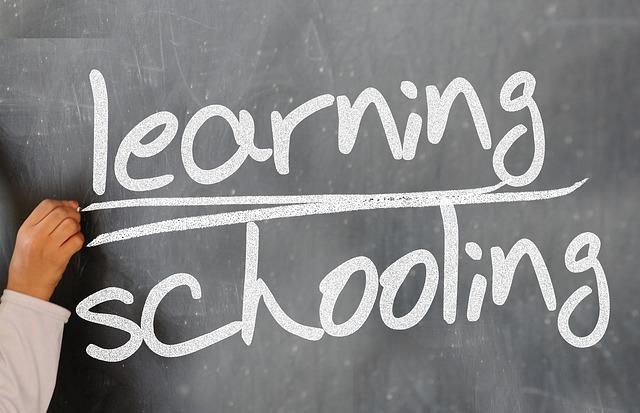 školit a učit se